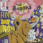 The Brooks - ZENDER (The MTL)