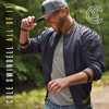 Love You Too Late - Cole Swindell mp3