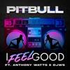 I Feel Good (feat. Anthony Watts & DJWS) by Pitbull