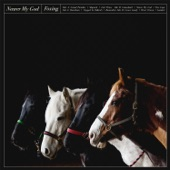 Foxing - Lich Prince