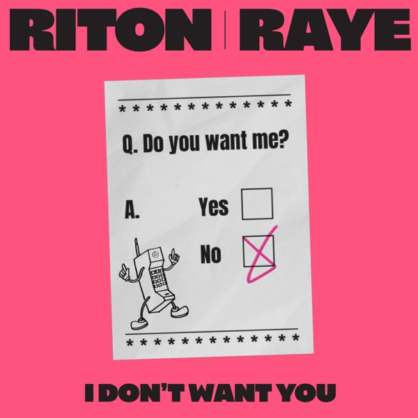 Riton / Raye - I Don't Want You