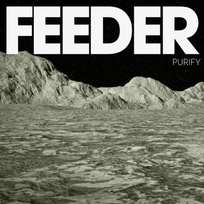 Purify - Single - Feeder