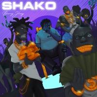 Barry Jhay - Shako - Single