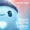 """Liam Payne - Sunshine (From the Motion Picture """"Ron's Gone Wrong"""" / Billen Ted Remix) artwork"""