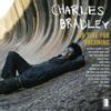 Charles Bradley - Lovin' You, Baby (feat. Menahan Street Band) Grafik