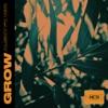 Alisky feat.VOR - Grow