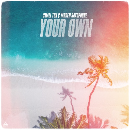 Your Own - Single by Small ToK & Yarden Saxophone