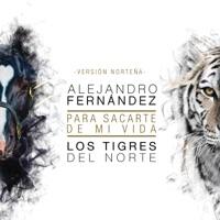Alejandro Fernández on Apple Music