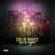 Love & Reggae - Collie Buddz