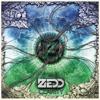 Zedd - Clarity (feat. Foxes) ilustración