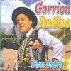 Gorrion Andino - Andes ilustración
