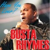 Have you Ever? - Single, Busta Rhymes