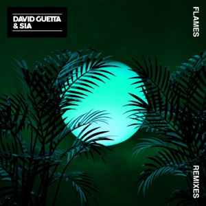David Guetta & Sia - Flames (Aazar Remix)