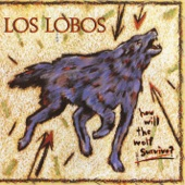Los Lobos - I Got Loaded