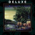 Fleetwood Mac - Little Lies (Remastered)