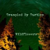 Trampled by Turtles - Wildflowers