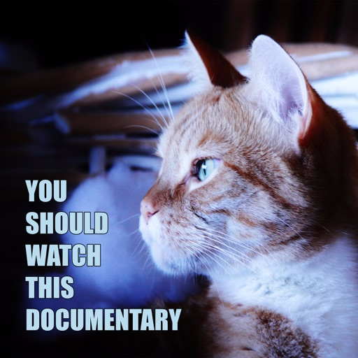 Cover image of You Should Watch This Documentary