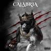 Calabria Remix Single feat Alex Gaudino Single