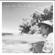 Hit the Road Jack - Yann Muller