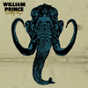 Earthly Days - William Prince