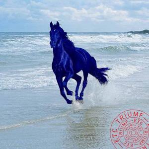 Den blå hästen