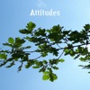 Attitudes - Single, Fabiano Fab Mornatta