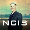 NCIS, Season 15 - Synopsis and Reviews