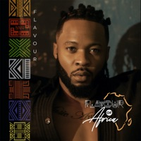 Flavour - Flavour of Africa
