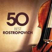 Cello Concerto in D Minor, RV 406: I. Allegro non molto artwork
