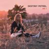 Vol. 1 - EP - Destiny Petrel