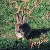 Joyces - Maybe