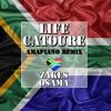 Life Catoure - Zakes Osama (Amapiano Remix) artwork