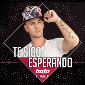 Te Sigo Esperando (feat. Karol G) - Single Mp3 Download