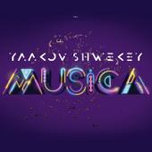 Musica-Yaakov Shwekey