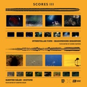 Interstellar Funk - Seasonshore Sequences
