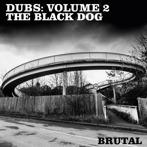 Dubs: Volume 2 - EP by The Black Dog