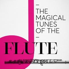Flute Sonata in D Major, Op. 94: III. Andante