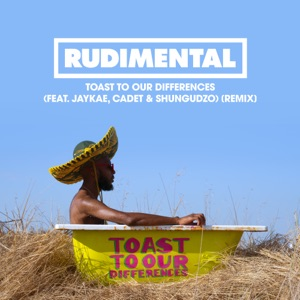 Toast to our Differences (feat. Jaykae, Cadet & Shungudzo) [Remix] - Single Mp3 Download