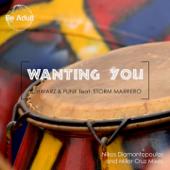 Wanting You (feat. Storm Marrero) [Nikos Diamantopoulos Remix]