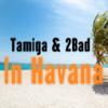 Tamiga - In Havana (feat. 2Bad) artwork
