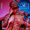 Nick Cannon - Calling All Models: The Prequel  artwork