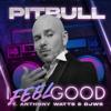 I Feel Good feat Anthony Watts DJWS - Pitbull mp3