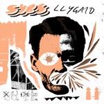 SYBS - Llygaid