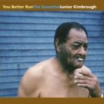 Junior Kimbrough - Sad Days, Lonely Nights