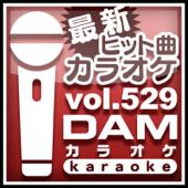 U.S.A. (カラオケ Originally Performed By DA PUMP)
