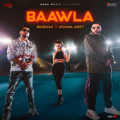 Baawla Mp3 Song Download