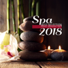 Spa Best Selection: 2018 Relax After Hard Long Day, Healing Nature Therapy, Inner Bliss & Body Relaxation - Various Artists