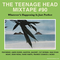 Podcast cover art for The TEENAGE Head Mixtapes