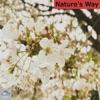 nature-s-way