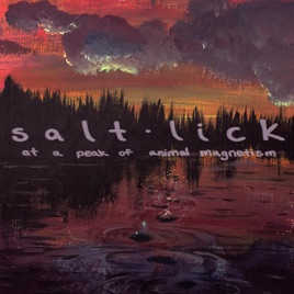 salt lick black singles Salt lick is heavy, mid-fast hard rock with guitar and a reverbed wah-wah guitar break, sounding more than a little like the moving sidewalks the other side is heavy, mid-fast blues rock with guitar and organ.